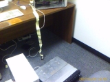 01-04-2007: Testing Ground