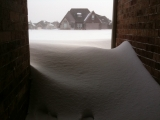2-1-2011: I have to dig out of this eventually