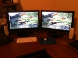 3-25-2011: New monitors for the house
