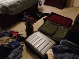 2-18-2013: Post cruise laundry situation