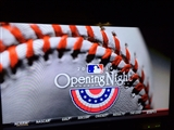 3-30-2014: Baseball is back!